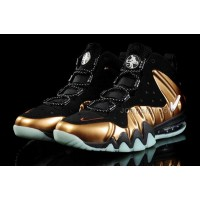 Nike Barkley Posite Max Shoes Bronze/Black Online