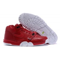 Nike Air Trainer 1 Brick Red Sale