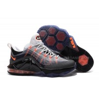 Nike LeBron 12 Low Air Max 95 Sale