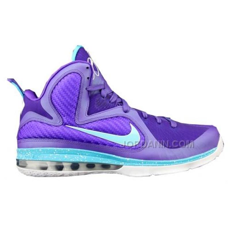 online retailer 7a700 8ab65 USD 76.00. Nike LeBron 9 Summit Lake Hornets Purple ...